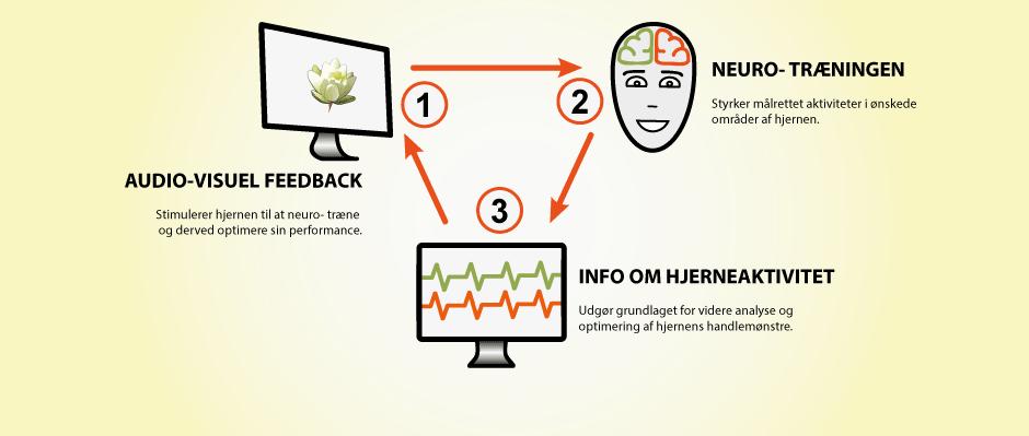 Hvordan hjernetræner man